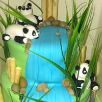 panda engagement