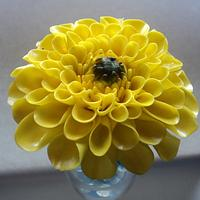 Yellow Dahlia by Goreti