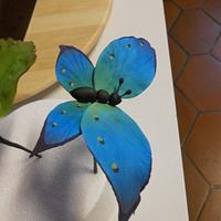 Butterfly sugar paste