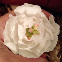 Peony Rose ... Faux cold Porcelain by Lisa Templeton