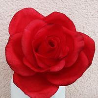 Gumpaste red rose