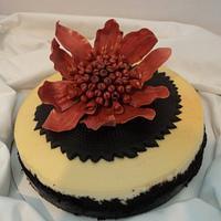 White chocolate raspberry cheesecake by Goreti
