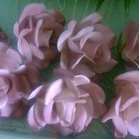 Gum paste Roses by robier