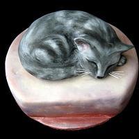 Sleeping kitten cake