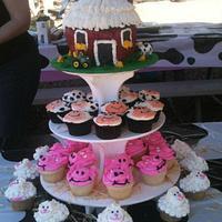 Barn Themed party