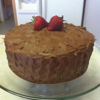 Double chocolate fudge cake and frosting