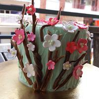 Cherry blossoms mini cake