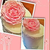 Lovely little peony cake