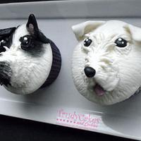 Pupcakes Pair
