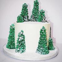 Winter forrest christmas cake.