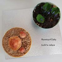 Planet cake by Judit