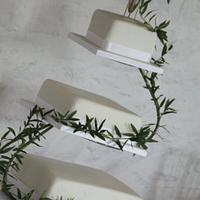 Simple olive leaf wedding cake