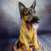 German Shepherd dog cake II