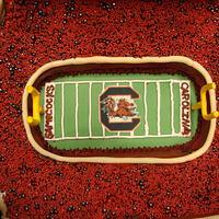 Williams-Brice Stadium at the University of South Carolina by Cakes ROCK!!!