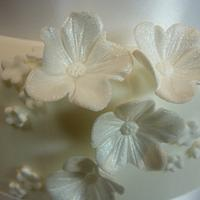 White Blossom Wedding Cake by CodsallCupcakes