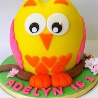 Adelyn's Owl Smash Cake