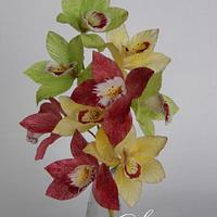 Wafer Paper Cymbidium Orchids