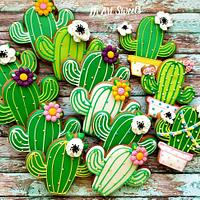 Do you love cacti!🌵🌵🌵