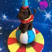 Rufus the performing circus dog from the circus ring room at the cake carnival  by For goodness cake barlick