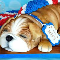 Puppy Cake for NHS