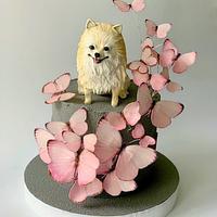 Cute pom-pom  by Dsweetcakery