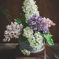 Sugar lilac by lovescakes