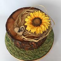 Stump & sunflower