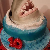 10th Birthday Shark Cake