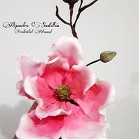 Magnolia en pasta de azucar!!