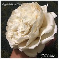 Romantic ivory english rose for wedding cake