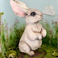 Rabbit (Animal Rights Collaboration)