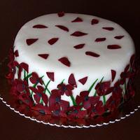 Poppies by Anka