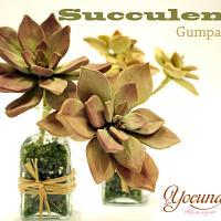 Suculentas en pasta de Goma - Gumpaste Succulent