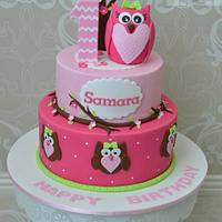 Owl themed 1st birthday cake