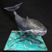 A Whale cake by Victoria Zagorodnya