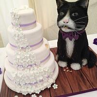 wedding cake and the Cat