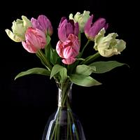 Tulip sugar flowers