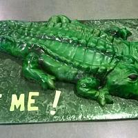 Alligator for Grandma
