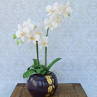 Potted Phalaenopsis orchid cake