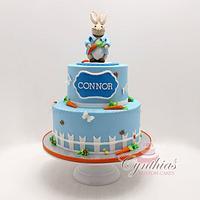 Peter the rabbit birthday cake