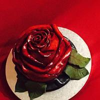Red rose cake🌹