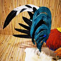 Rooster-Magnificent Bangladesh