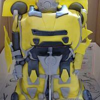 3D Bumblebee Transformer