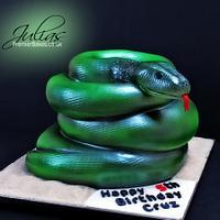 Reptile Snake Cake