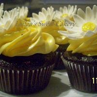 Yellow Daisy Cupcakes