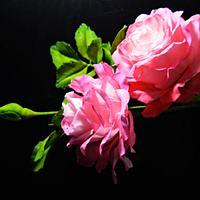 Freeformed sugar roses- Ombré coloring on roses