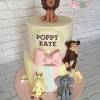 Babycakes & Roses Cakecraft