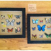 Gallery of Exotic Butterflies