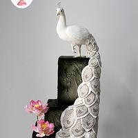 Majestic White Peacock