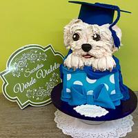 Graduacion Bichon meltes
